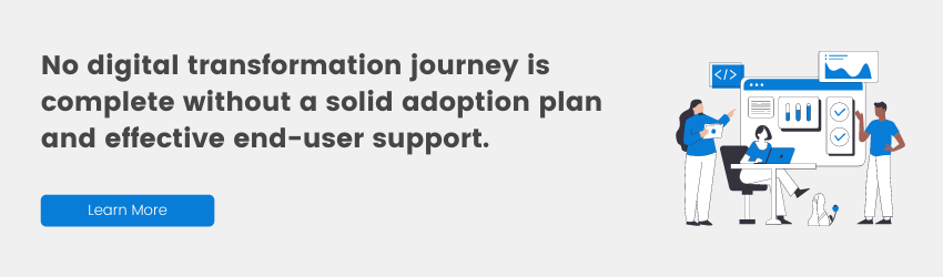 Adoption plan and effective end-user support