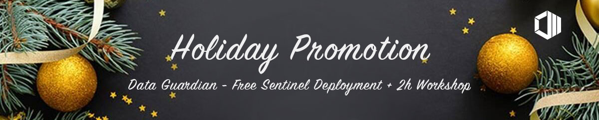 data-guardian---holiday-promotion