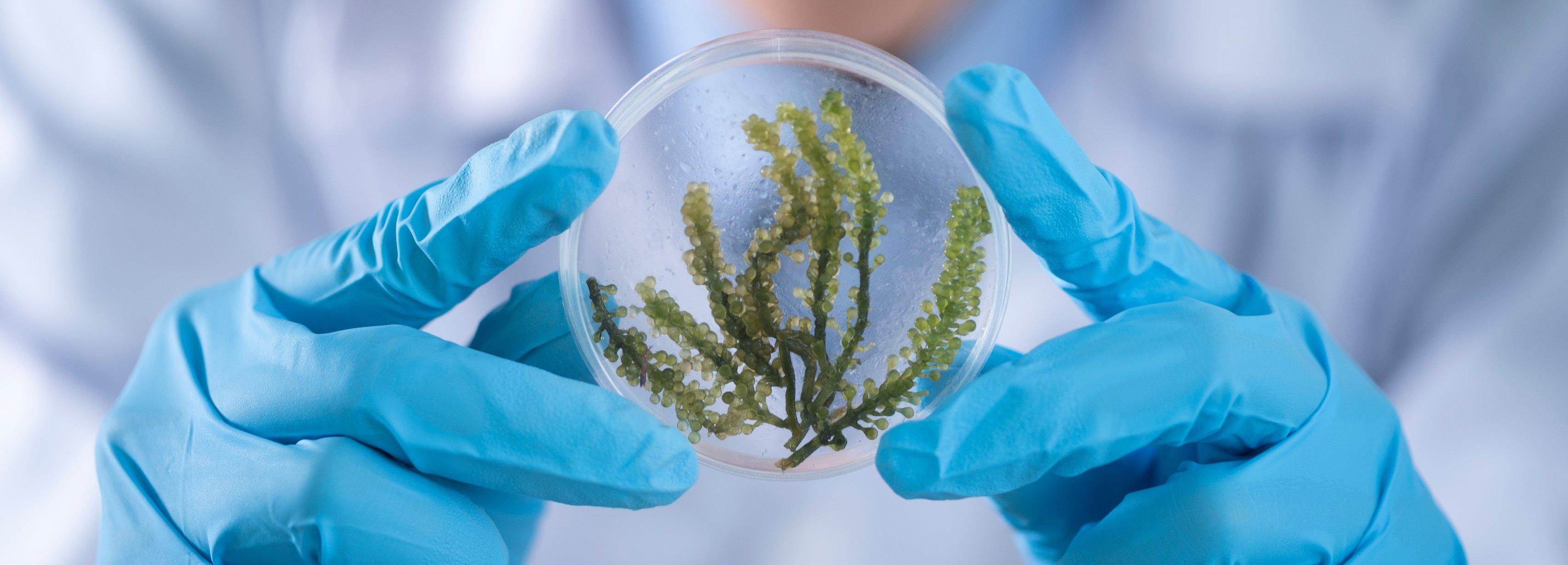 Therapure Biopharma case study