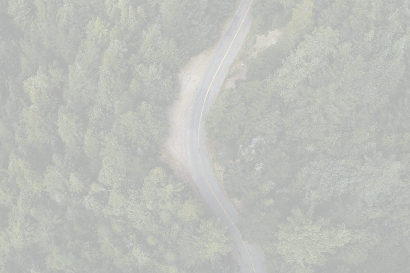 IT Roadmap - Why Your Organization Needs It
